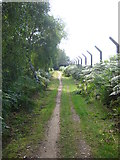 TM3448 : Path along the perimeter fence of the former RAF Woodbridge by Chris Holifield