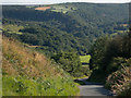 NZ7806 : Egton Banks and Arncliffe Wood by Colin Grice