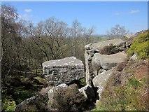 SE2065 : Brimham Rocks by Derek Harper