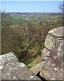 SE2065 : Outlook from Brimham Rocks by Derek Harper