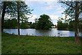 SE5640 : The pond at Home Farm, Nun Appleton Estate by Ian S