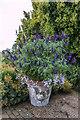 TQ7899 : Planter, Hyde Hall, Essex by Christine Matthews