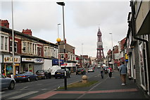 SD3035 : Looking down Central Drive to Blackpool Tower by Chris
