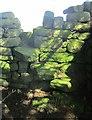 SE2263 : Mossy stile near Scratchard Corner by Derek Harper