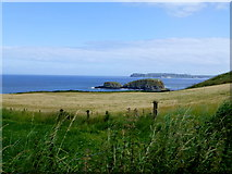 D0444 : View from Ballintoy by Kenneth  Allen