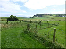 D0444 : Double bend, coastal path, Ballintoy by Kenneth  Allen
