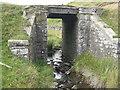 NT4752 : Bridge over a burn by M J Richardson