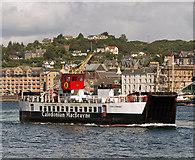 NM8529 : Loch Striven in Oban Bay by The Carlisle Kid