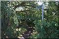 SE3846 : Public footpath off Trip Lane near Linton, Wetherby by Ian S