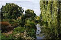 TQ2882 : Gardens in Regent's Park by Bill Boaden
