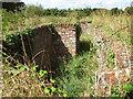 TM1780 : Overgrown blast shelter by Evelyn Simak