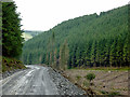SN8455 : Forestry road in Cwm Nant y Fedw, Powys by Roger  Kidd