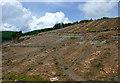 SN8456 : Forestry clear fell in Cwm Nant y Fedw, Powys by Roger  Kidd