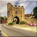 SK9871 : Pottergate Arch by David Dixon