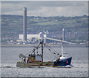 J5082 : The 'Highland Queen' off Bangor by Rossographer