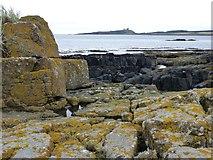 NU2424 : Rocks on Emblestone by Russel Wills