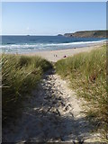 SW3526 : The path through the dunes to Sennen beach by Rod Allday