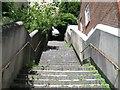 TQ2906 : Flight of steps by Alex McGregor