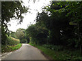 TM3097 : Seething Road, Kirstead Green by Adrian Cable