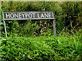TM3197 : Honeypot Lane sign by Adrian Cable