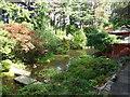 SZ0589 : Stream in Japanese Garden by Paul Gillett