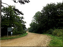 TM3193 : Entrance to Hall Farm by Adrian Cable