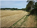 TA1468 : Harvested crop field beside the B1253 by JThomas