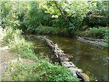 TQ1372 : River Crane by Robin Webster