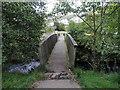 SS9092 : Wooden footbridge over the Afon Garw in Blaengarw by Jaggery