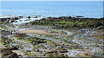 NO4202 : Beach, Lower Largo by Richard Webb