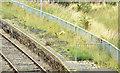 J1576 : Platform, Crumlin station (August 2014) by Albert Bridge