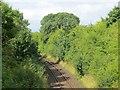 NS3007 : Stranraer to Glasgow railway by Richard Webb
