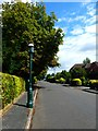 SU7038 : Looking north east on Kings Road by Shazz
