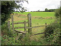 SJ4364 : Footpath and Stile at Huntington by Jeff Buck