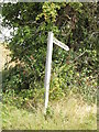 TM2998 : Footpath sign off Zig Zag Lane by Adrian Cable