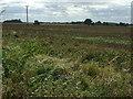 TL2575 : Farmland south west of Kings Ripton by JThomas