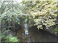 TQ2174 : Beverley Brook, Roehampton by David Howard