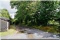 SX5079 : West Devon Way at Mary Tavy by Sandy B