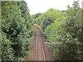 NS3415 : Railway, Carcluie by Richard Webb