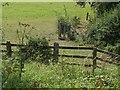 SU8871 : Footpath gate by Alan Hunt