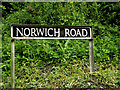 TM3189 : Norwich Road sign by Adrian Cable