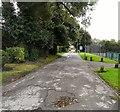 SJ8994 : North Reddish Park by Gerald England