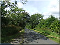 NY1026 : Country road near Pardshaw by David Brown