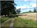 NY5442 : Farm road at Staffield by Oliver Dixon