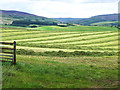 NY5547 : Newly mown field at Woodgill House Farm by Oliver Dixon