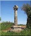 SX7957 : Luscombe Cross by Derek Harper