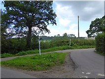 ST1005 : Road junction at Lane End by David Smith