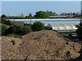 TF2624 : Wykeham Nurseries next to the River Welland by Mat Fascione