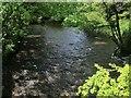 SX7351 : River Avon at Topsham Bridge by Derek Harper