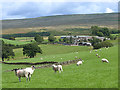 NY6042 : Field with sheep and Haresceugh Farm by Oliver Dixon